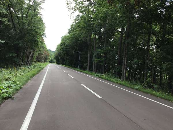 森の中の道をサイクリング